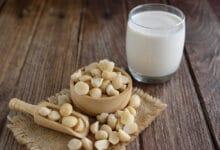 Photo of Tous les bienfaits du lait de noisette et la recette pour le faire maison
