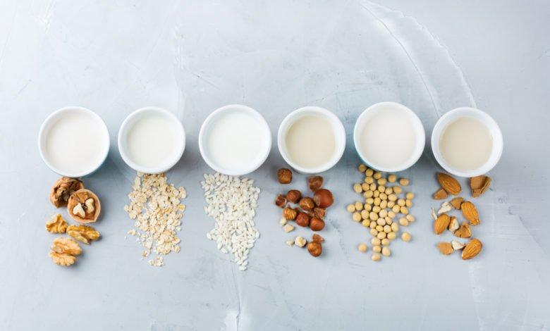 comment préparer le lait végétal maison