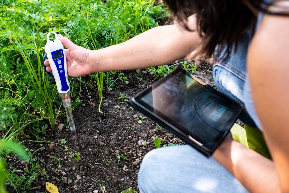 Comment mesurer le pH du sol