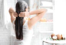 Romarin cheveux : soins pour les cheveux à base de romarin