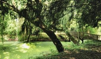 Echologia : la réussite d'un site de tourisme éco-responsable en Mayenne