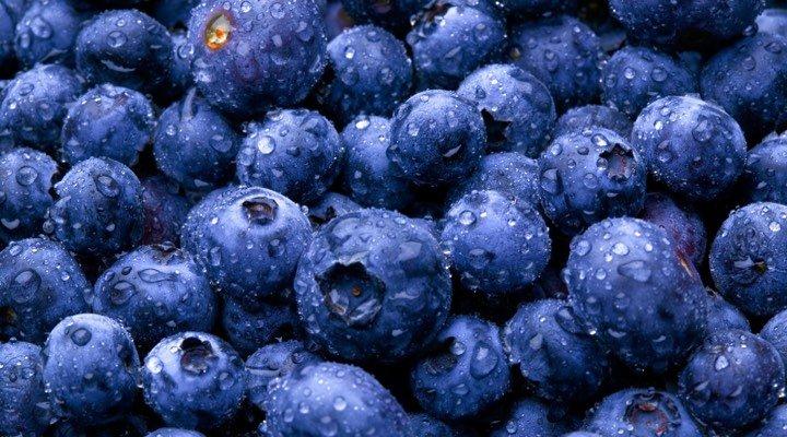 bleuet fruit