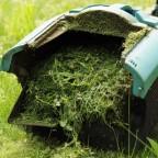 Le paillis : comment exploiter au mieux la tonte des pelouses ?