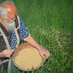 L'agriculture sauvage pour le retour à la civilisation