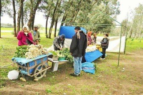 Brachoua, la fin de la misère par la permaculture