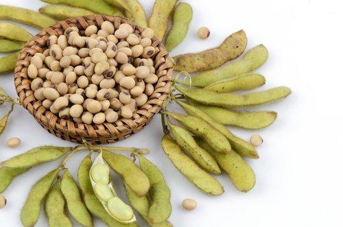 Lécithine de soja : danger ou allié ?