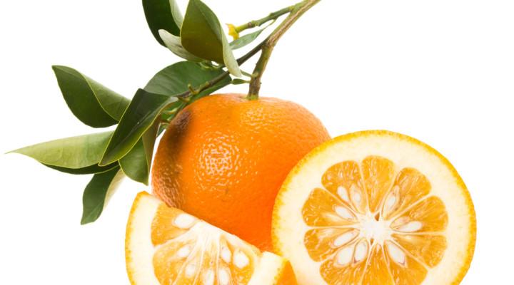 Orange amère, pilule douce ou amère?