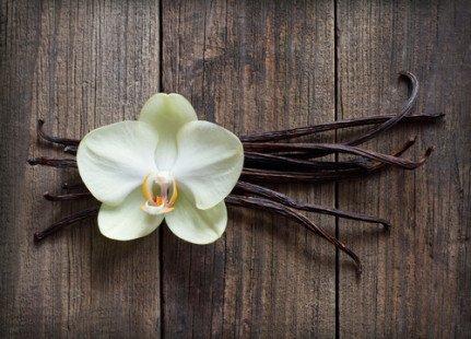 L'huile essentielle de vanille naturelle, pour notre derme