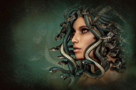 L'huile de serpent, un trésor pour les cheveux !