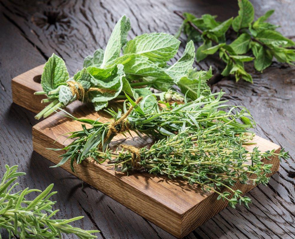 comment r colter les plantes sauvages et les herbes aromatiques. Black Bedroom Furniture Sets. Home Design Ideas