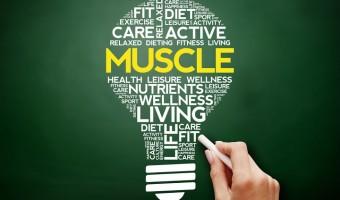 Les acides aminés essentiels, le b.a.-ba de notre santé