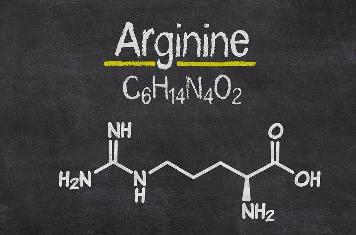 L'arginine : semi-essentielle ne veut pas dire accessoire