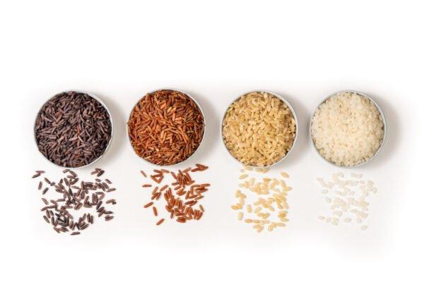Type de riz