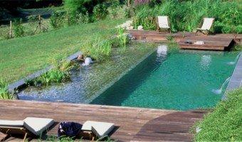 Piscine naturelle : coût d'entretien, aspect écologique et sécurité