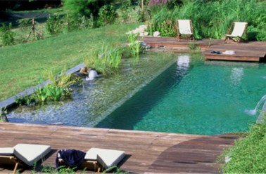 Piscine naturelle co t d entretien aspect cologique et for Chlore dans la piscine
