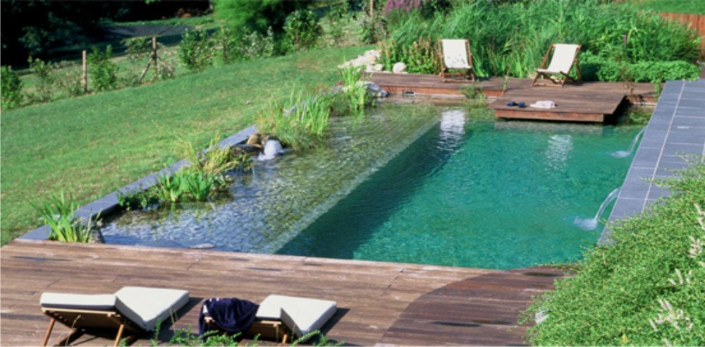 Piscine naturelle co t d entretien aspect cologique et for Cout piscine