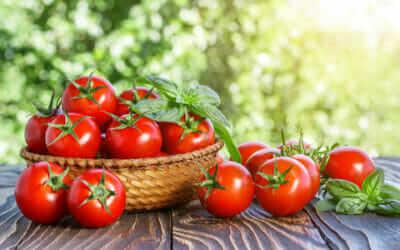 Photo of Découvrez les nombreuses propriétés de la tomate, un aliment riche en éléments bénéfiques comme les vitamines et le bêta-carotène.