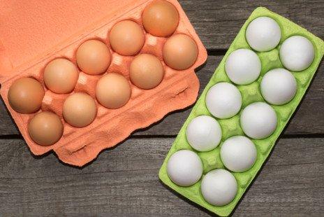 Biotine : les aliments qui en contiennent
