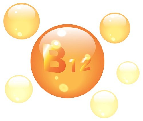 L'essentielle vitamine B12