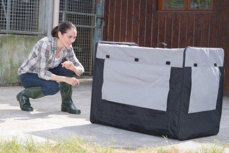 Quelle cage de transport pour chiens choisir ?