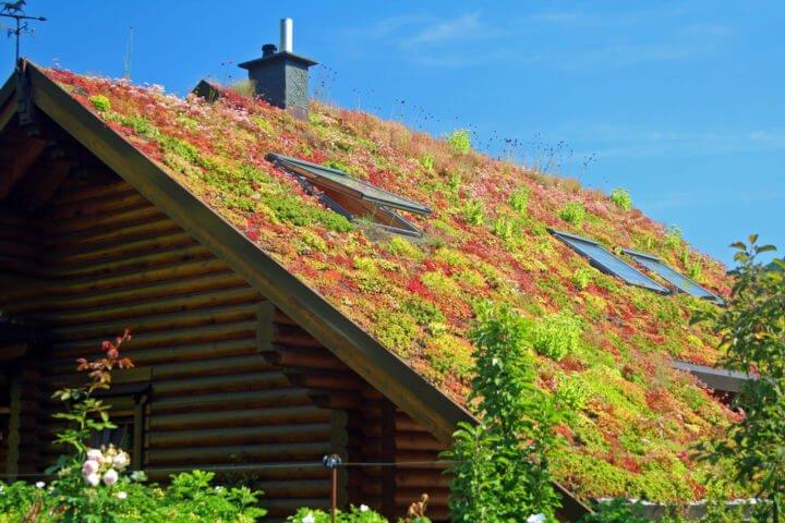 Photo of Fabriquer soi-même une toiture végétalisée : mode d'emploi