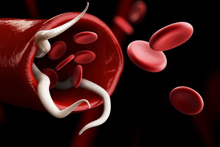 Tout savoir sur le régime groupe sanguin