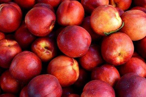 Les bienfaits des nectarines