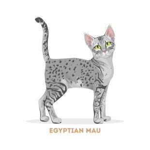 Les caractéristiques du Mau Égyptien