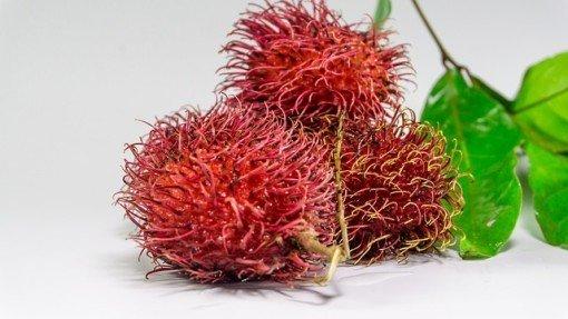 Les ramboutans, un fruit aux multiples bienfaits !