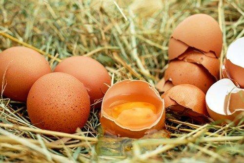 Par quoi remplacer un œuf ?