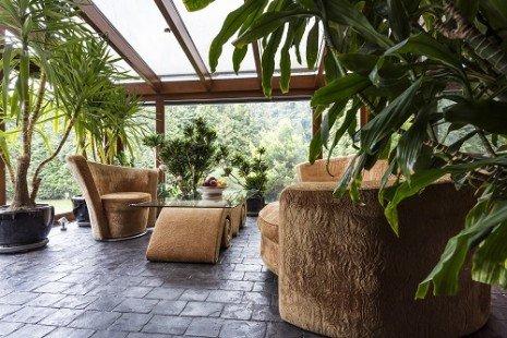 plantes intérieur2