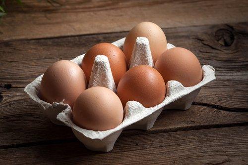 Zoom sur les œufs