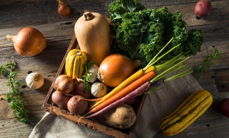 Que faire pousser en novembre dans votre potager
