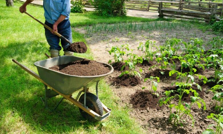 Que faire pousser en février dans votre potager ? Personne amendant avec du terreau sur une brouette