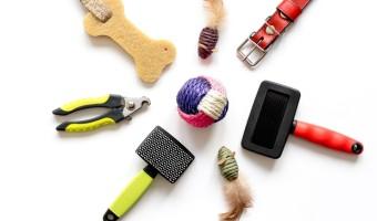 Quels accessoires pour votre chat ?