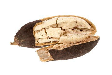 Baobab, le nouveau super aliment ?