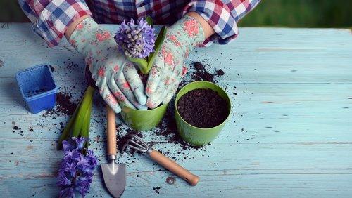 Outils de jardinage : tous nos conseils pour bien les choisir