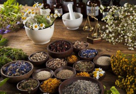 Se soigner avec des plantes médicinales