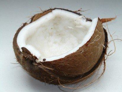 Sucre de coco : les propriétés nutritionnelles décryptées