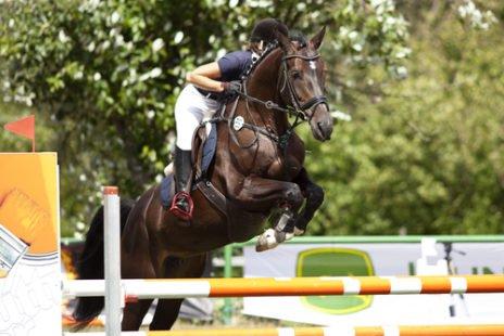 Équitation : un sport noble
