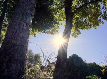 L'importance de bien positionner ses lampes solaires