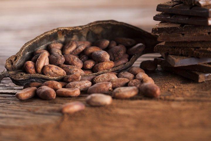Photo of Les bienfaits du cacao sur la santé