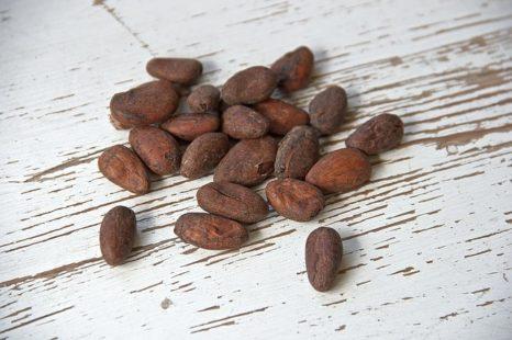 Les fèves du cacaoyer