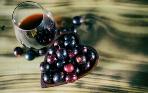 Polyphénols : un gage de bonne santé