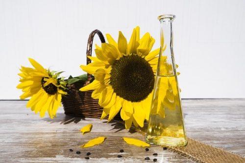 L'huile de tournesol : un vrai atout santé et beauté !