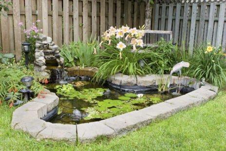 Un mare dans son jardin : esthétique et bénéfique à la biodiversité !