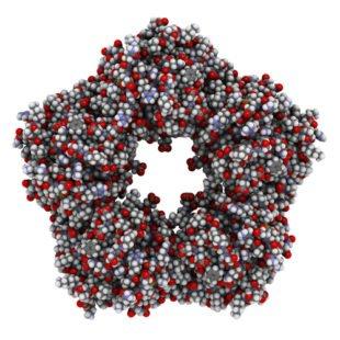 Pourquoi la protéine C réactive est-elle importante ?
