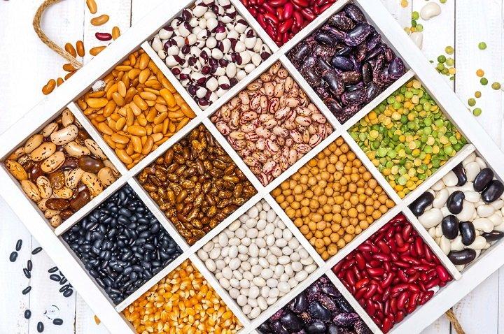 Les protéines végétales, loin des clichés