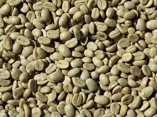 Conseils d'utilisations du café vert