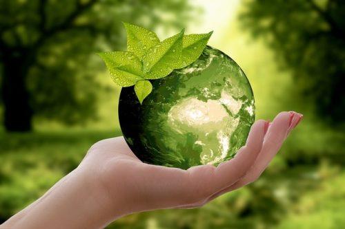 Photo of Astuces pour la journée de la terre